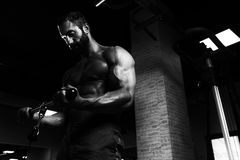 Powerful Muscular Man Exercising Biceps On Cable Machine Stock Photography
