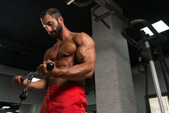 Powerful Muscular Man Exercising Biceps On Cable Machine Royalty Free Stock Photo