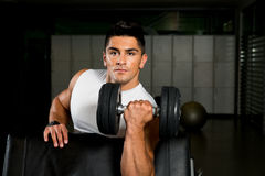 Powerful muscular man lifting weights. Muscular man lifting weights in gym Royalty Free Stock Photo