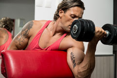 Powerful Muscular Man Lifting Weights. Men In Gym Exercising With Dumbbells Royalty Free Stock Images