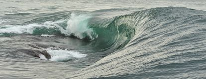 Powerful ocean wave breaking. Wave on the surface of the ocean. Wave breaks on a shallow bank. Stock Photography