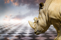 Powerful rhino.gamero chess, pieces marble floor Royalty Free Stock Image