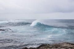 Powerful splash sea wave Royalty Free Stock Photo
