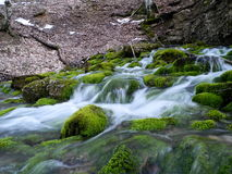 Powerful spring in the mountain forest. NCrimean Mountains Stock Images
