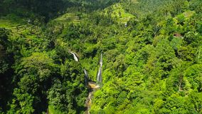 Powerful Tropical Waterfall in Green Rainforest. Waterfall near Rice Field.