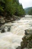 Powerful waterfall Probiy in Ukraine Stock Image