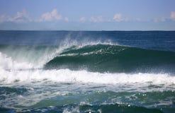 Powerful wave Stock Image