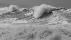 Powerful windblown storm surf. Biggest swell in decades slams the north shore of Oahu.  50ft waves on the outside reefs and close out sets at Waimea, Storm winds Royalty Free Stock Image