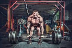 Powerlifter con le forti armi che sollevano i pesi Immagini Stock