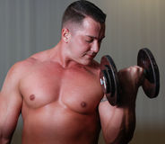 Powerlifter with dumbels in gym Stock Photography