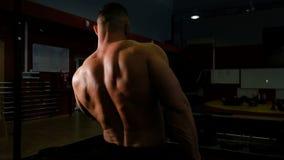 Powerlifter sacude su bíceps con pesas de gimnasia, primer trasero de la visión metrajes