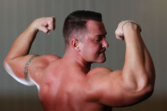 Powerlifter showing his bicep Stock Photography
