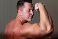 Powerlifter showing his bicep Royalty Free Stock Image