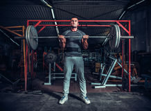 Powerlifter with strong arms lifting weights Royalty Free Stock Photography