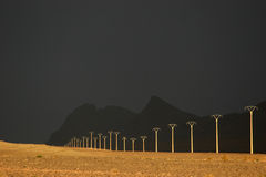 Powerline in the dessert Stock Photography