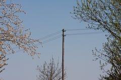 powerline na niebieskim niebie Zdjęcia Royalty Free