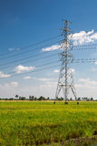 Powerline Stock Photography