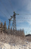Powerline su una foresta di inverno Immagine Stock