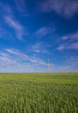 Powerline on a wide green field. Stock Images