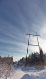 Powerline on a winter forest Stock Photo