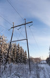 Powerline on a winter forest Royalty Free Stock Image