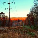 Powerlines Immagine Stock