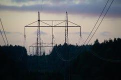 Powerlines al tramonto che attraversa la foresta Immagine Stock