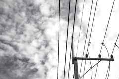 Powerlines with colored clouds. royalty free stock photos