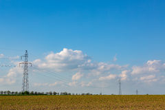 Powerlines on corn field Stock Photo