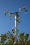 Powerlines i en parkera Royaltyfri Fotografi