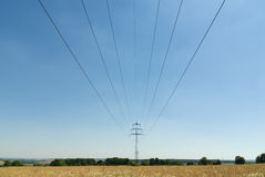 Powerlines in Summer Royalty Free Stock Photo