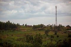 Powerlines w parku Obraz Stock