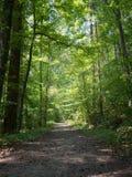 Powers Island Hiking Trail Stock Photos