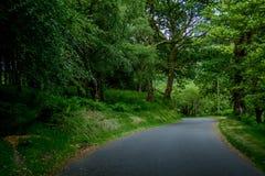 Powerscourt Road, Ireland Stock Image