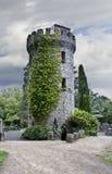 Powerscourt Tower stock photo