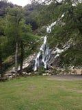 Powerscourt Wasserfall Lizenzfreie Stockfotografie