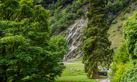 Powerscourt Waterfall in the summer Royalty Free Stock Images