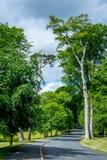 Powerscourt Wicklow län Arkivfoton