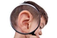 Powiększać ucho Fotografia Royalty Free