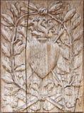 powiększ drewna Zdjęcie Royalty Free