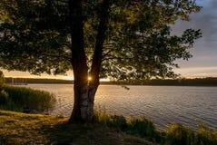 Powidz湖 库存照片