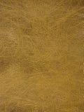 powierzchnię skóry Obraz Stock