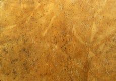 powierzchnię skóry Fotografia Stock