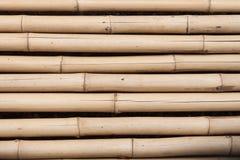 Powierzchnia bambusowy zbliżenie Zdjęcia Royalty Free