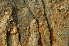 Powierzchnia brown kamień Ochronny wzór fotografia royalty free