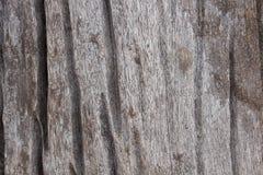 Powierzchnia drewna pęknięcie ponieważ wilgoć Obrazy Royalty Free