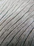 powierzchnia drewnianego makro Obraz Royalty Free