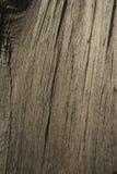 Powierzchnia drewno obraz stock