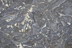 Powierzchnia marmurowy kamień taktujący Zdjęcie Royalty Free
