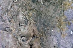 Powierzchnia marmurowy kamień taktujący Obrazy Stock
